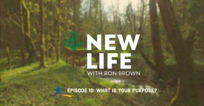 New Life 10
